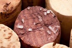 Kork av en wineflaska med tartar Arkivbilder