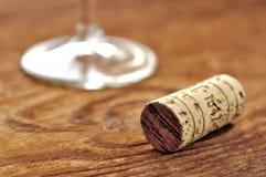 Korka och exponeringsglas av italiensk rött vin Arkivbild