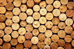 korka wino Zdjęcia Stock
