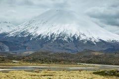 Korkad Parinacota för snö vulkan Royaltyfria Bilder