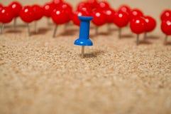 Korkbräde med färgrikt ben Royaltyfri Fotografi