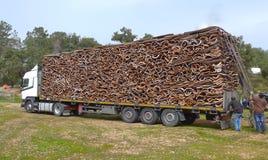 Korkeken, skället som staplas på en lastbil, ordnar till till trans. Royaltyfria Foton