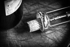 Korkenstopper des italienischen Weins Stockbilder