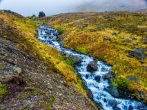 Korkenzieher-Nebenfluss in den Clearwater-Bergen Lizenzfreie Stockfotos