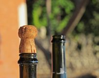 Korkowe stopper i butelki dziury Zdjęcie Royalty Free