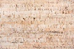 korkowi tło piegi niektóre texture obrazy stock