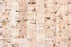 korkowi tło piegi niektóre texture zdjęcia royalty free