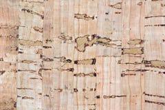 korkowi tło piegi niektóre texture zdjęcie stock