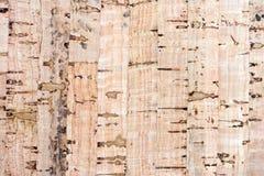 korkowi tło piegi niektóre texture zdjęcia stock