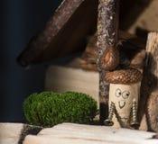 Korkowy dom wiejski Zdjęcie Royalty Free