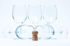 korkowy szklany kłamstwa stojaka szklany wino Obraz Stock