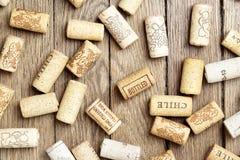 korkuje różnorodnego wino Obrazy Stock