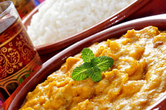 Korma curry and basmati rice Stock Image