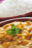 Korma curry. Closeup of an earthenware bowl with korma curry and a bowl with basmati rice in the background Stock Images