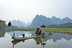 Kormoran, fiskmannen och Li River landskap siktar med dimma i sprin Royaltyfri Foto