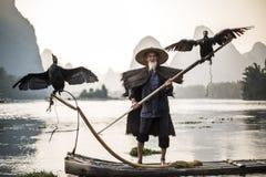 Kormoranfischer, der Vögel zeigt Stockfotos