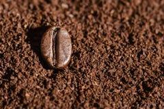 Korn av grillat brunt kaffe ligger på nytt malt kaffe, bakgrund arkivfoton