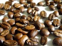 Korn av kaffe royaltyfri fotografi