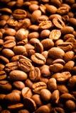 Korn av kaffe Arkivbild