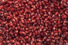 Korn av pomegranates Fotografering för Bildbyråer
