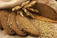 Korn des frischen Brotes und des Roggens Lizenzfreie Stockfotos