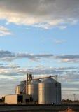 Korn-Höhenruder und Sonnenuntergang Lizenzfreie Stockbilder