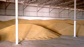 Korn i en hangar arkivbilder