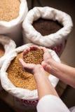 Korn i stora påsar bryggeriet Royaltyfria Bilder