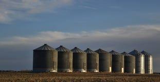 Kornbehälter Stockfoto
