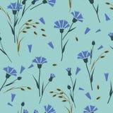 Kornblumen, Muster der wilden Blumen Stockfoto