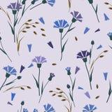 Kornblumen, Muster der wilden Blumen, purpurroter Hintergrund Stockfoto