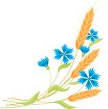 Kornblumen und Ährchen Lizenzfreies Stockbild
