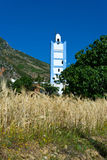 Kornfält med minaret Fotografering för Bildbyråer