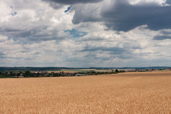 Kornfeld mit bewölktem Himmel, Dorf in der Tschechischen Republik Stockfoto