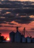 Kornhöhenrudersonnenuntergang Stockbilder