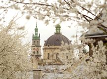 Korniakta Tower and Church of the Blessed Eucharist former Domi. Nican convent church, Lviv, Ukraine royalty free stock photos