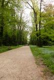 Kornik Arboretum Royalty Free Stock Images