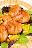 Kornische Henne-Umhüllung-Mehrlagenplatte Lizenzfreie Stockfotografie