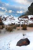 Kornischer Teich Snowy Lizenzfreie Stockbilder