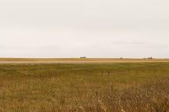 Kornsilor på präriehorisonten Arkivfoton