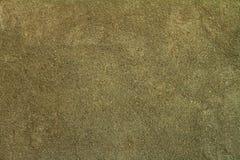 Kornvägg Arkivfoto