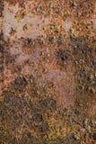 Korodujący metalu talerz Z Ciężkim rdzy I mech przyrostem Obrazy Stock