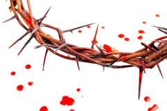 koron krwionośne krople zrobili cierniom zdjęcie stock