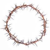 Korona ciernia jezus chrystus Obraz Stock