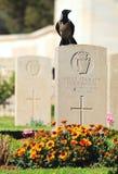 Korona na grób. zdjęcie royalty free