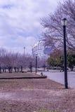 Koronapark Stockfoto