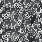 Koronkowej wektorowej tkaniny bezszwowy wzór Zdjęcia Stock