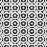 koronkowy biel Obraz Stock