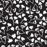 Koronowego koperkowego kwiatu bezszwowy wzór Zdjęcie Royalty Free