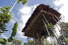 Korowai Tree House Royalty Free Stock Photo
